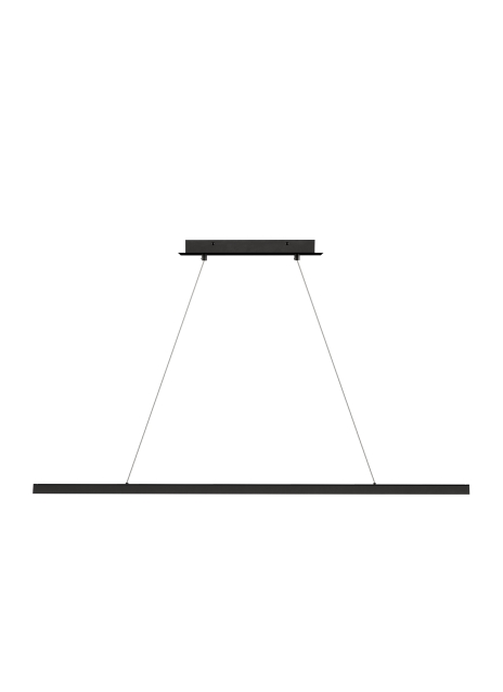Dessau 48 Linear Suspension