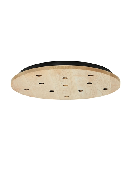Line-Voltage Round Canopy 11-port